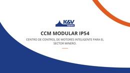 Presentamos el CCM Modular IP54